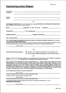 Muster Einer Trennungs Und Scheidungsfolgenvereinbarung