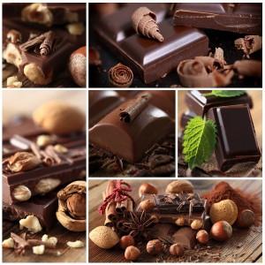 Der Mops verträgt keine Schokolade