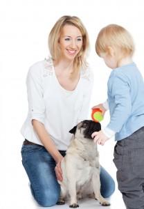 Mops Ball spielen mit Kind