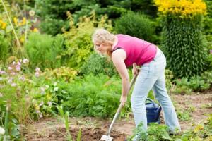 Meinen Mops im eigenen Garten vergraben. Worauf muss ich achten?