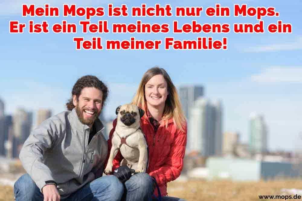 Eine Familie umarmt ihren Mops