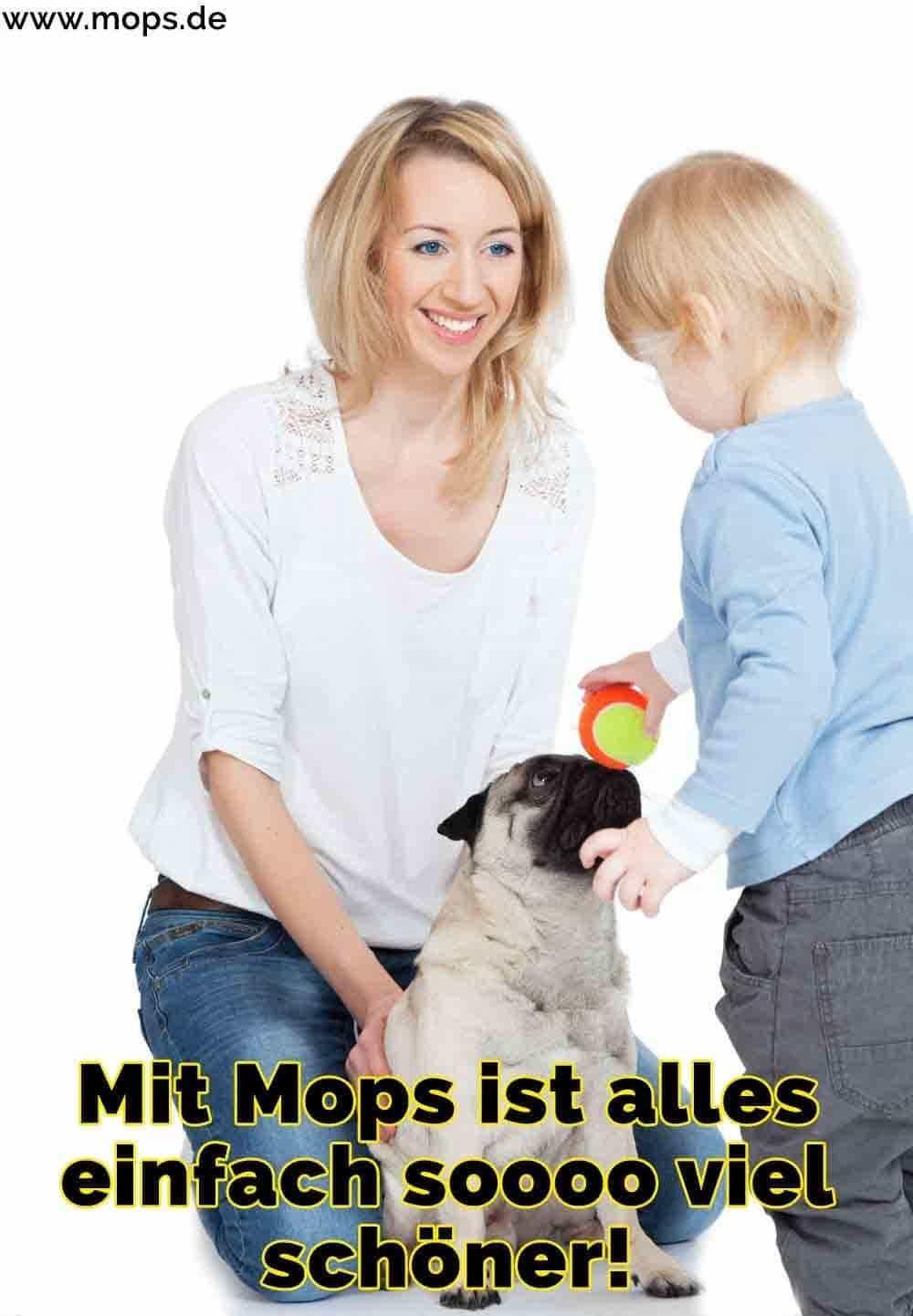 Ein Kind spielt mit seinem Mops und seiner Mutter