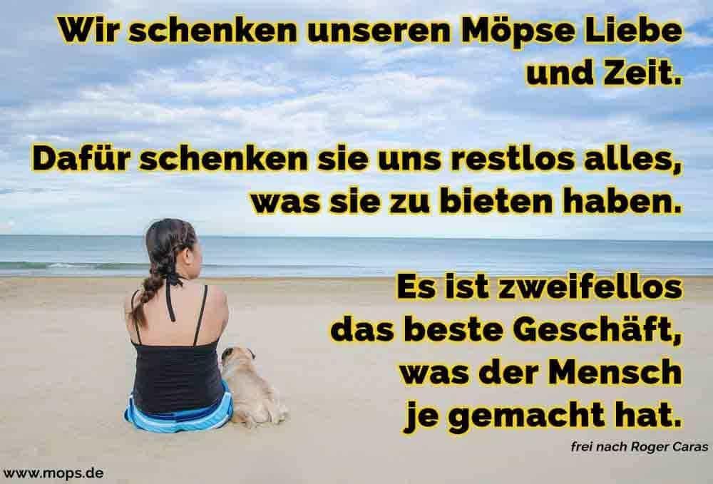Eine Frau und ihr Mops sitzt auf dem Strandsand