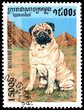 CAMBODIA - CIRCA 1997: postage stamp, printed in Cambodia, shows a Pug Carlin